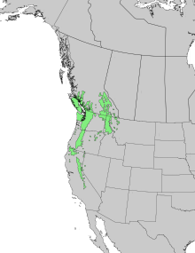 Pinus monticola range map 1.png