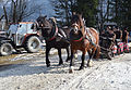 Pinzgauer Brauchtums- und Trachtenschlittenfest, 2. Februar 2014, 14.JPG