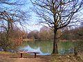 Pioneer Meadows Nature Reserve - geograph.org.uk - 17047.jpg
