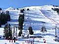 Pistes de ski côté Loze vues de Courchevel 1850 (décembre 2019).JPG