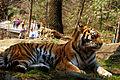 Pittsburgh Zoo (4509209457).jpg