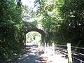 Plas Dinas Bridge - geograph.org.uk - 225167.jpg