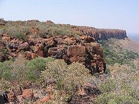 Plateau Waterberg.jpg