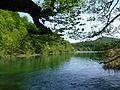 Plitvice lakes (45).JPG