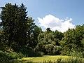 Poltava Botanical Garden (172).jpg