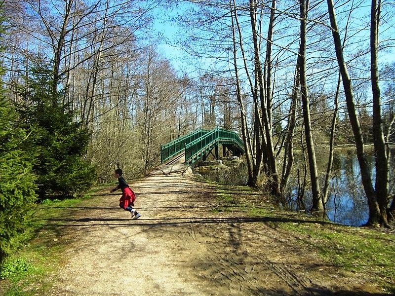 Pont étang de Cessy, 01170 Cessy France