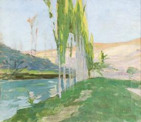 Poplars Growing near a Watercourse