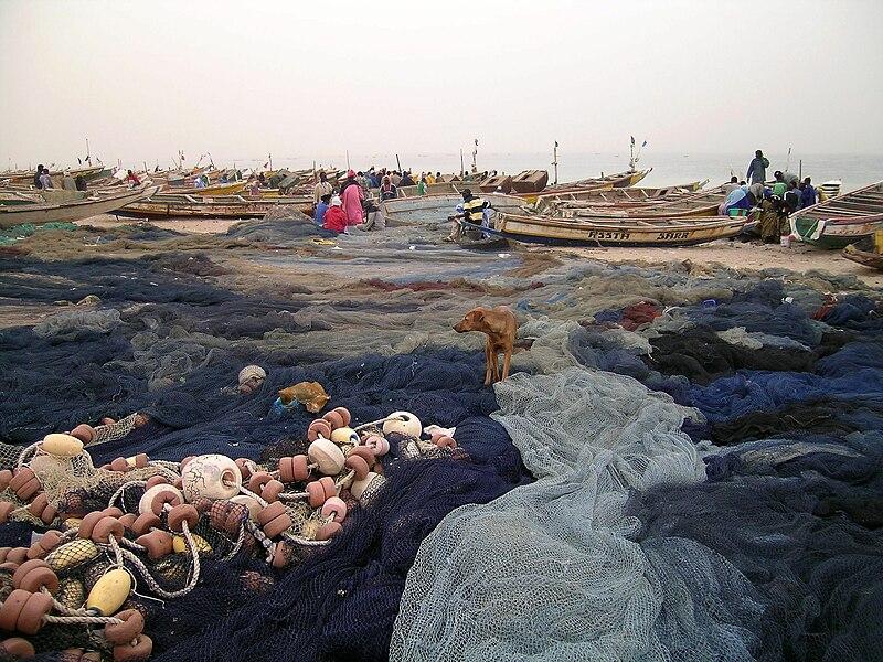 File:Port de peche Nouakchott.jpg