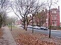 Princes Road, Liverpool (1).jpg