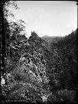 Pulpit Rock, Jenolan (4903828172).jpg