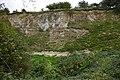 Quarry by B1249 - geograph.org.uk - 252902.jpg