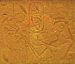 Tuya (queen) - King's Mother Tuya