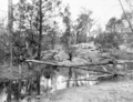 Queensland State Archives 2638 Temporary water supply Stanthorpe October 1918.png