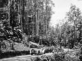 Queensland State Archives 864 View of motor vehicle and Gillies Highway Yungaburra to Cairns North Queenslands October 1927.png