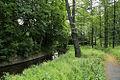 Radeberg Gelbkehain8.jpg