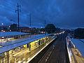 Rainy evening at Engadine Station 01.jpg