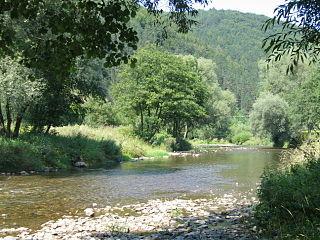 Rajčanka river in Slovakia