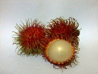 two unpeeled fruits with red spiky skin and one peeled fruit with white inside
