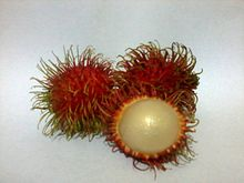Rambutan in white bg.jpeg