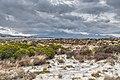 Rangipo Desert 17.jpg