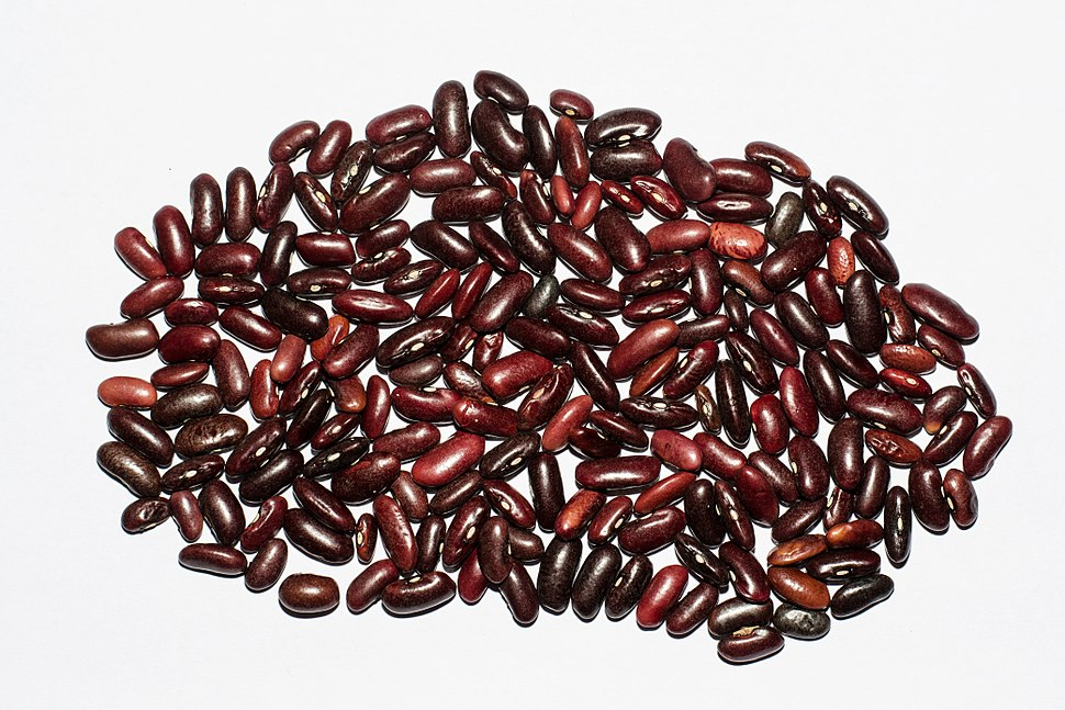 Red Rajma BNC