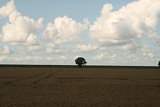 Oldambt (region) - Reiderwolder Polder