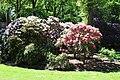 Rhododendronpark Bremen 20090513 151.JPG