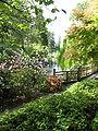 Rhody Garden Lake2.JPG