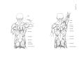 Richer - Anatomie artistique, 2 p. 115.png