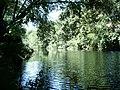 Rio Ceira em Foz de Arouce - panoramio.jpg