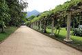 Rio de janeiro, jardim botanico, pergolato 01.JPG
