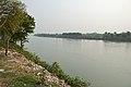 River Bhagirathi - Nizamat Fort Campus - Murshidabad 2017-03-28 6467.JPG