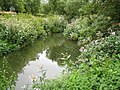 River Roach in Rochford - geograph.org.uk - 924469.jpg