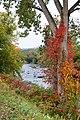 River in Putnam - panoramio.jpg