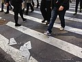 Road marking tapes on a New York City street.jpg