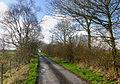 Road near Llanfihangel Helygen - geograph.org.uk - 354251.jpg