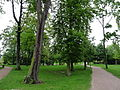Robertsau-Parc de la Petite Orangerie.JPG