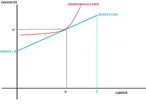 Robinson Crusoe economy - Figure 4: Robinson Crusoe's Maximisation Problem showing his budget line and indifference curve