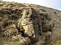 Rock outcrop - geograph.org.uk - 370320.jpg