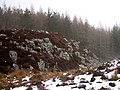 Rocks at forest edge - geograph.org.uk - 142459.jpg