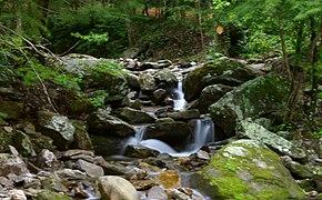 Rocky Broad tributary.jpg