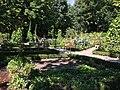 Royal Botanical Garden in Madrid 10.jpg