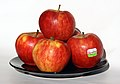 Rubens apples on plate.jpg