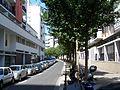 Rue Georges-Duhamel.JPG