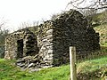 Ruin of a stone cottage - geograph.org.uk - 362167.jpg