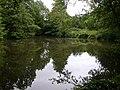 Ryton-Fishing Pools - geograph.org.uk - 2001099.jpg