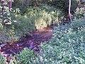 Rzeka Stok.jpg