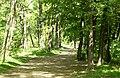 Sóstói parkerdő, 2012 Nyíregyháza, Hungary - panoramio (50).jpg