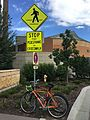 STOP bicycling, umn - Flickr - odako1.jpg