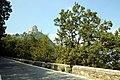 Sacra di San Michele 09.jpg